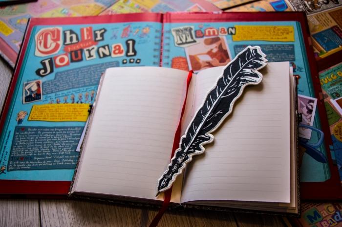 La page de garde d'une des BD de Lou et un carnet ouvert avec une plume © Chloé Andrianarisoa